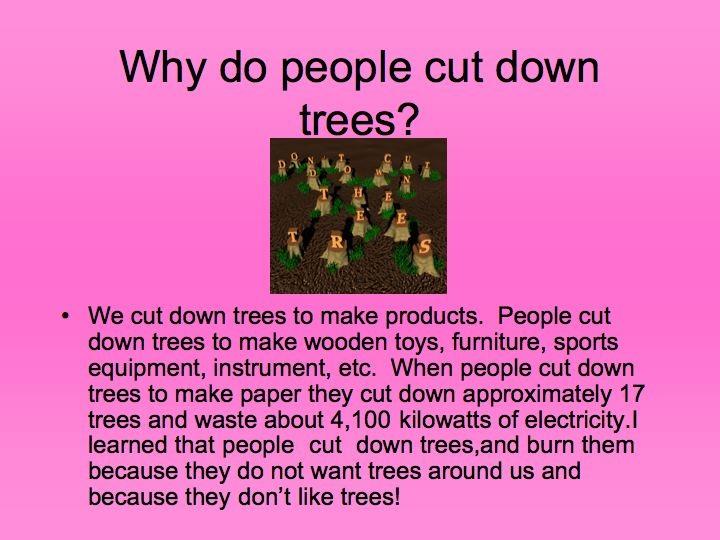 Top 28 Why Do We Cut Christmas Trees Maxresdefault Jpg